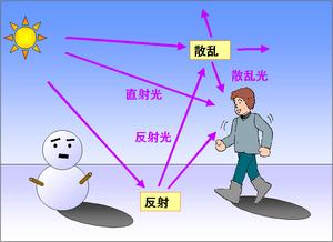 地表面の反射と紫外線