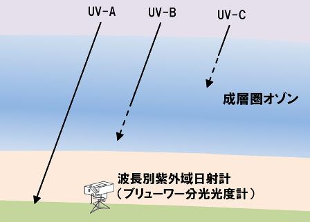 各領域の紫外線とオゾン層の関係