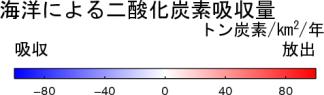 二酸化炭素交換量スケール