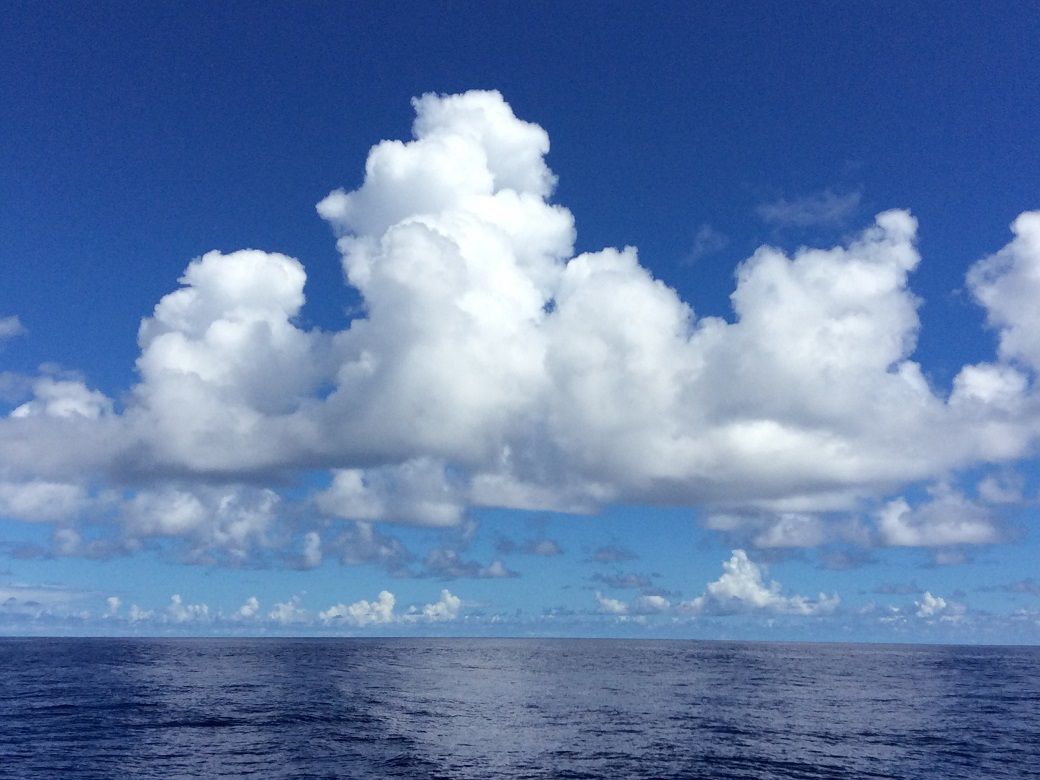 気象庁 | 海洋の健康診断表