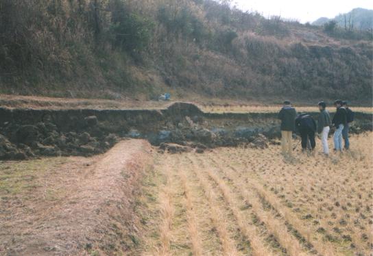 兵庫 県 南部 地震